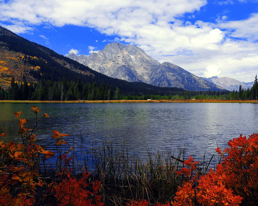 Mount Moran In The Fall Photograph