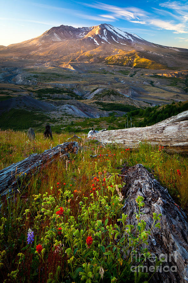 Mount Saint Helens Photograph  - Mount Saint Helens Fine Art Print