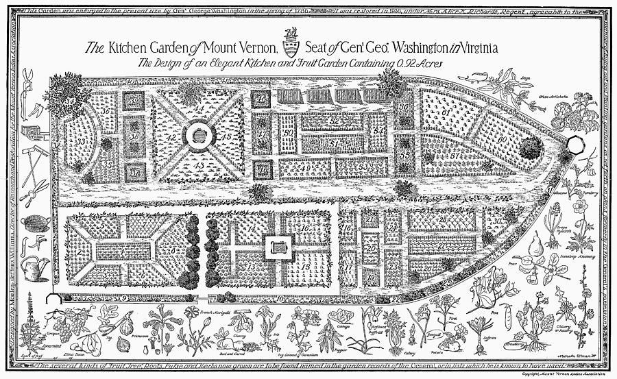 Mount Vernon: Garden Photograph