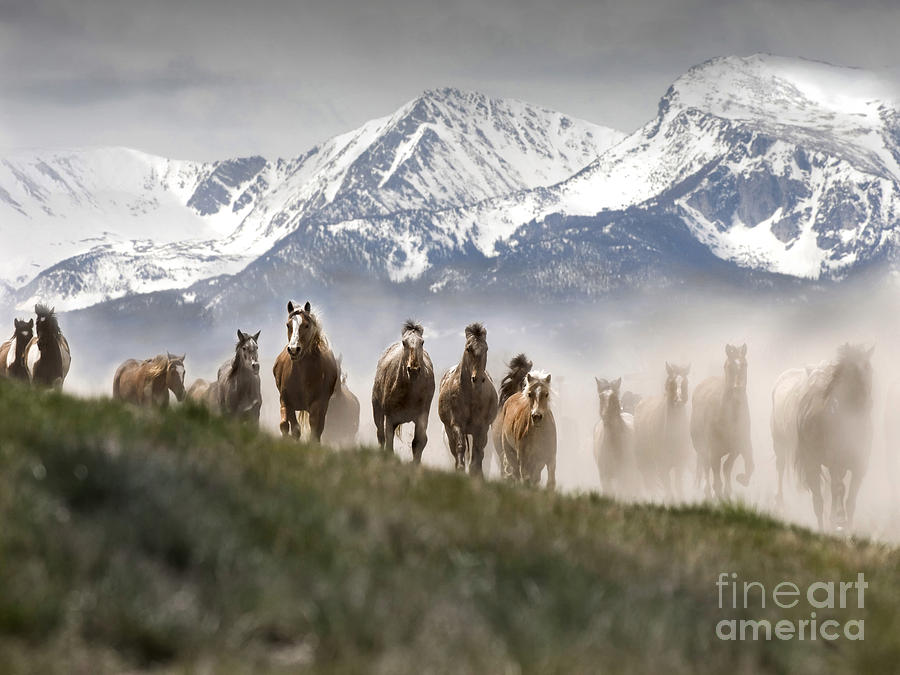 Mountain Dust Storm Photograph  - Mountain Dust Storm Fine Art Print
