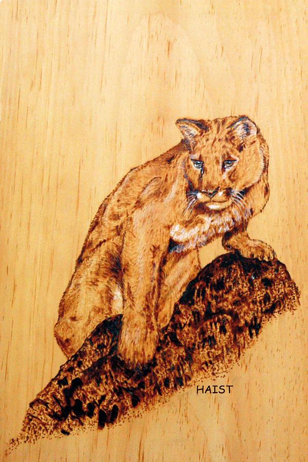 Mountain Lion Pyrography