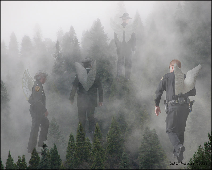 Mourning Mist Photograph