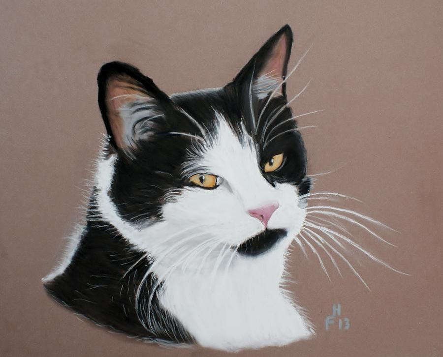 Cat. Pastel - Mr Jinx by Frank Hamilton