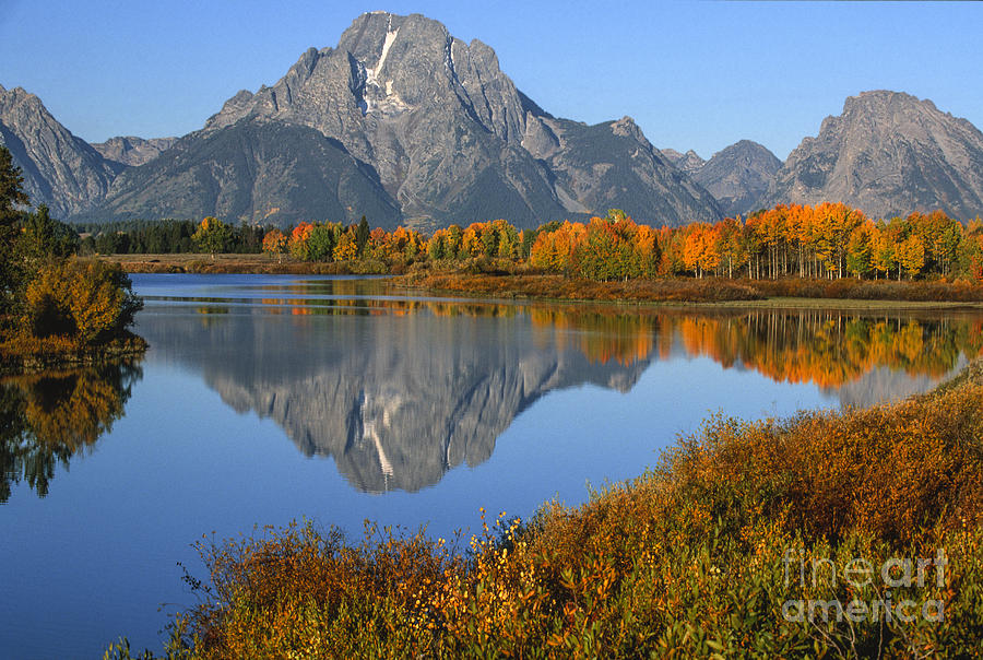 Mt. Moran Fall Reflection  Photograph  - Mt. Moran Fall Reflection  Fine Art Print