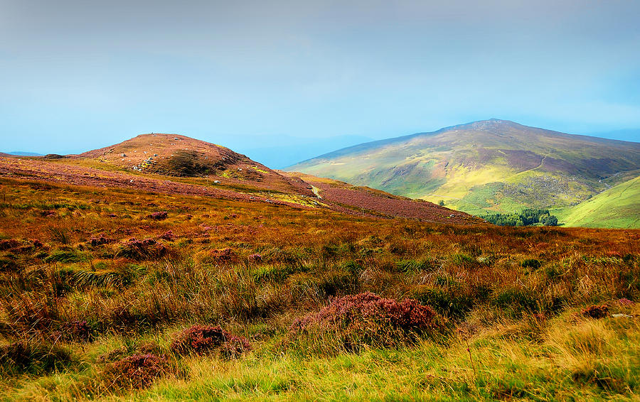 Wicklow hills, Ireland | Flickr - Photo Sharing! |Wicklow Hills Ireland