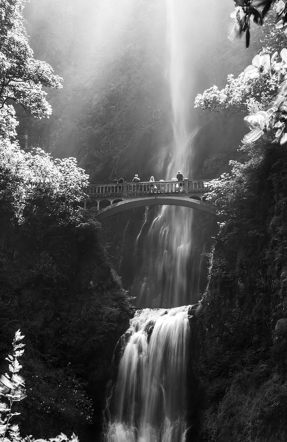 Multnomah Falls Oregon Photograph