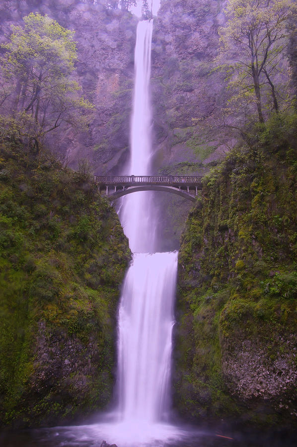 Multnomah In The Drizzling Rain Photograph