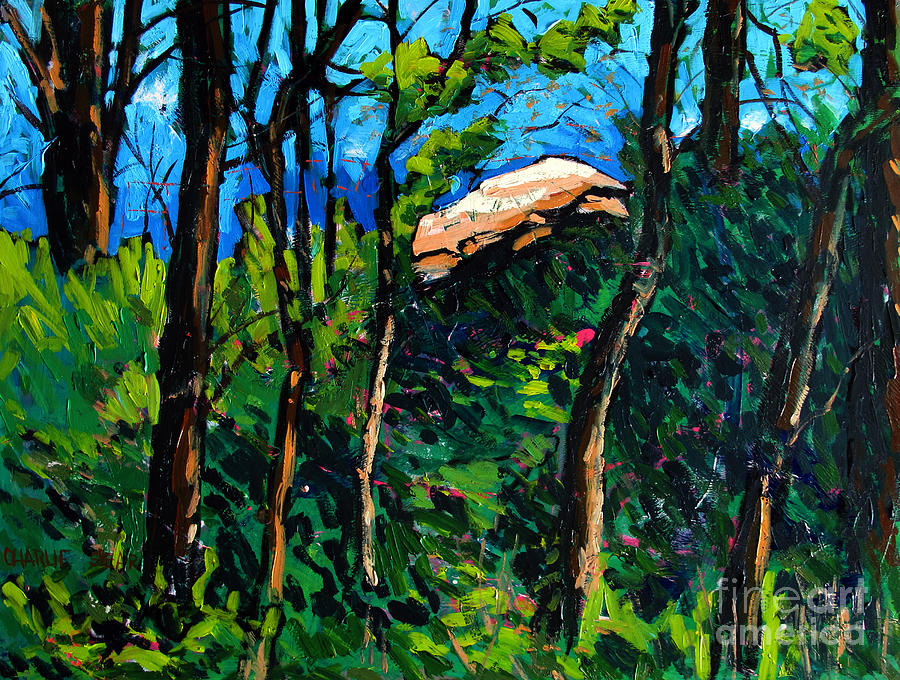 Treaty Painting - Mushrooming At Treaty Rock by Charlie Spear