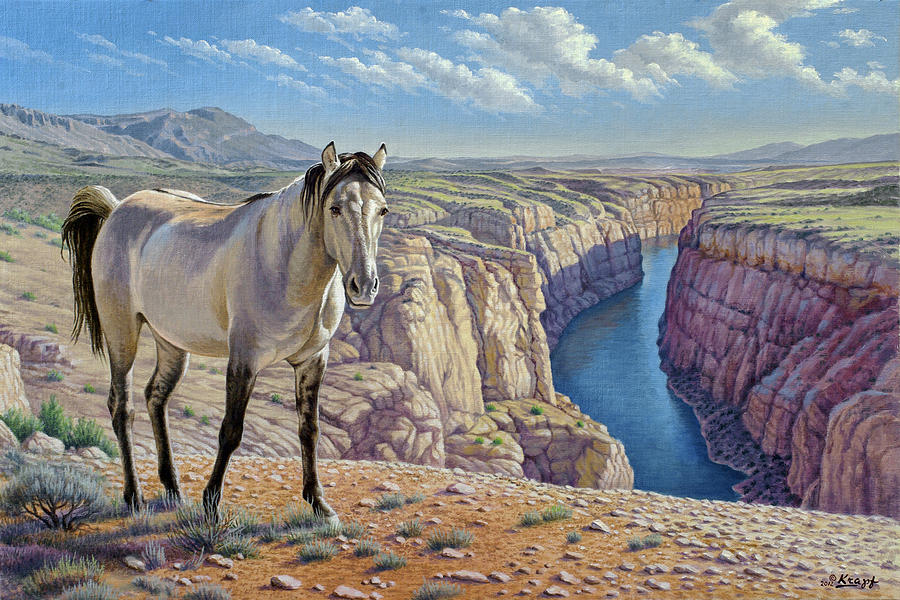 Mustang At Bighorn Canyon Painting