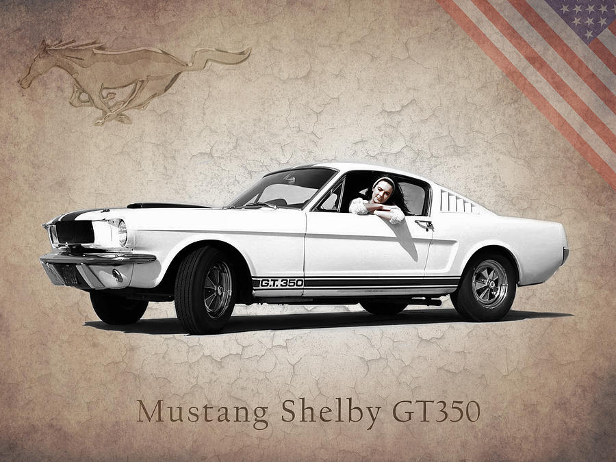 Mustang Shelby Gt 350 Photograph