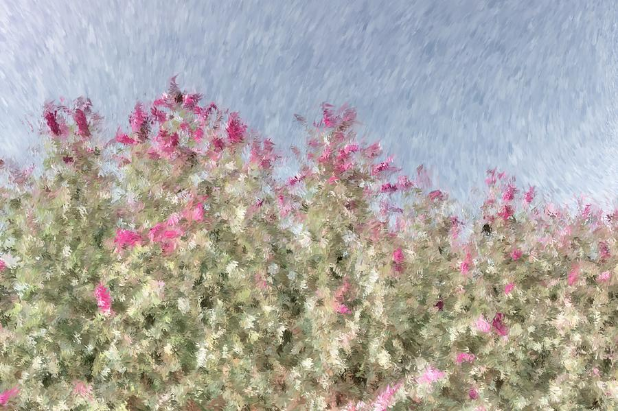 Background Photograph - My Spring Garden - Impressionism by Heidi Smith