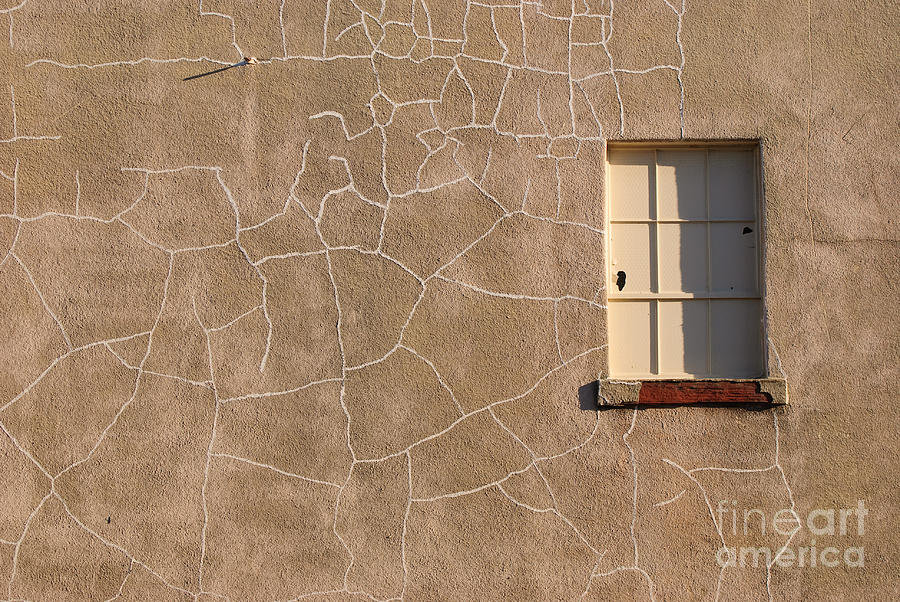 My Wall Photograph  - My Wall Fine Art Print