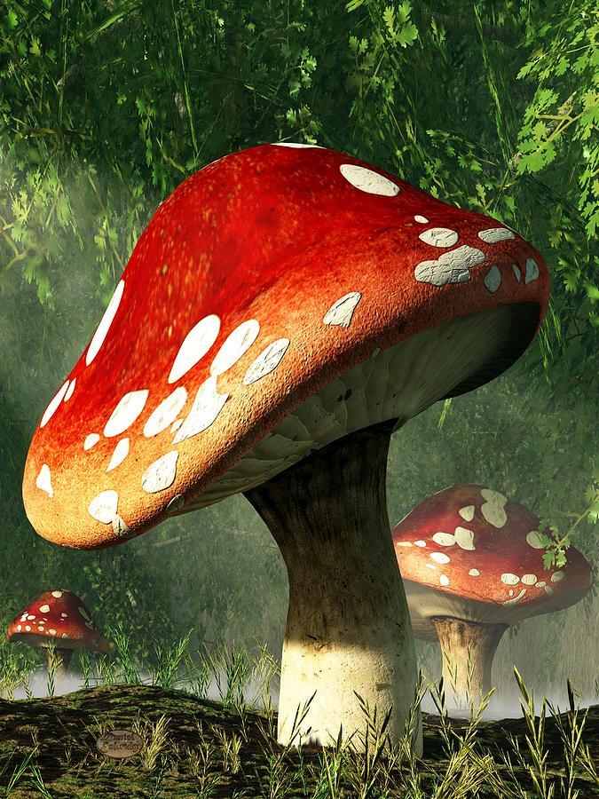 Mystic Mushroom Digital Art