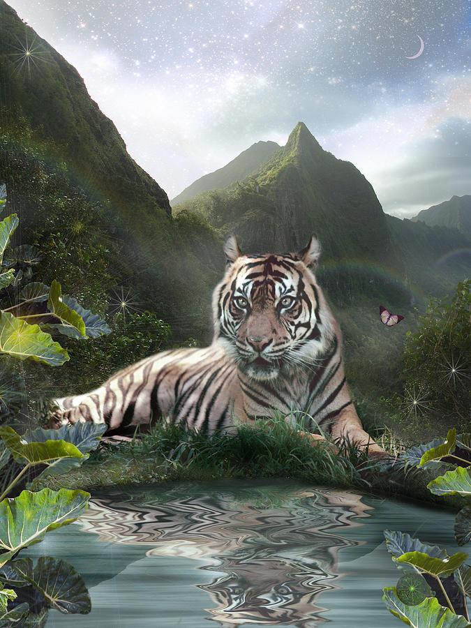 Mystic Tigress Photograph