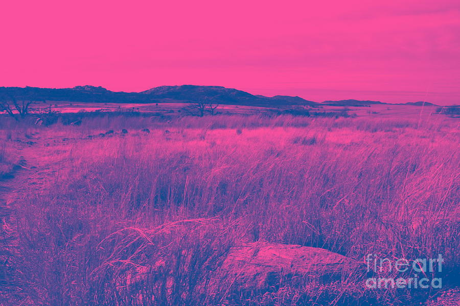 Landscape Photograph - Mystical Red by Mickey Harkins