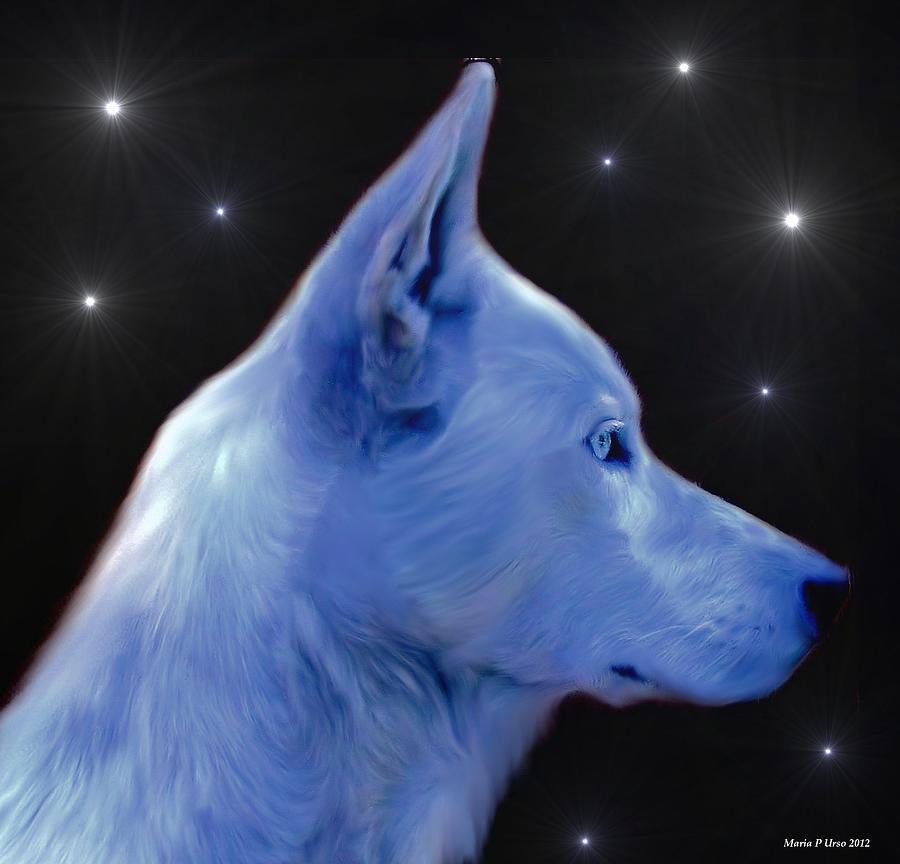 Mystical Wolf