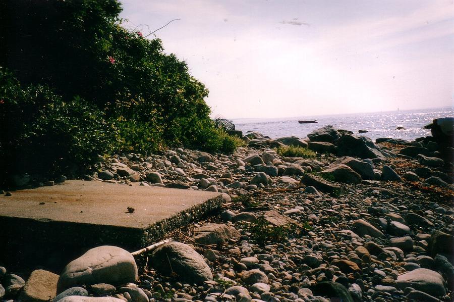 Napatree Debris Photograph