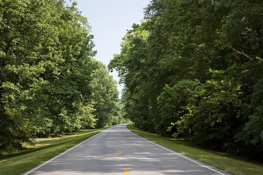 Natchez Trace Parkway In Cobert County Photograph