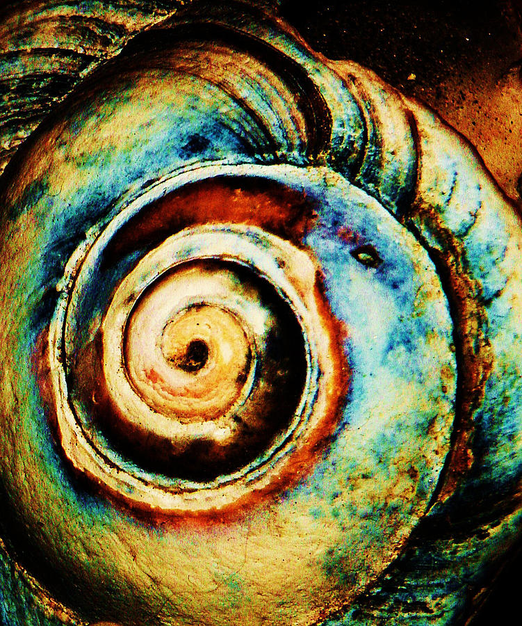 Native Spiral Photograph