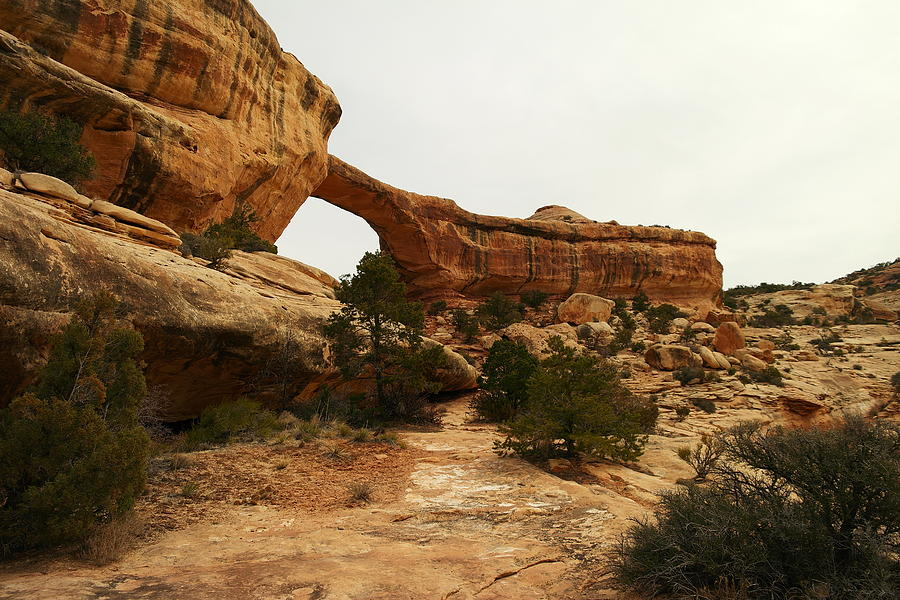 Natural Bridge Southern Utah Photograph  - Natural Bridge Southern Utah Fine Art Print