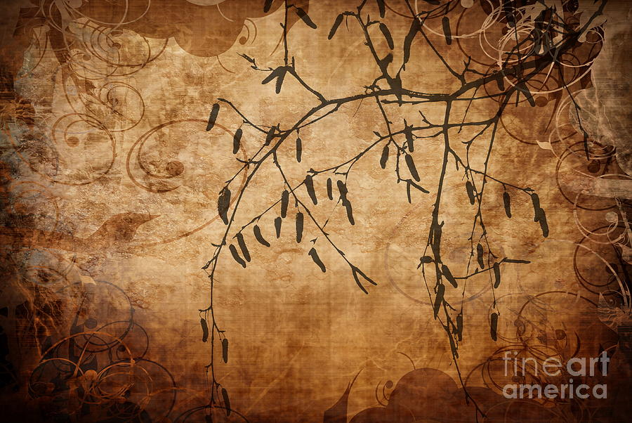 Nature Canvas  Photograph  - Nature Canvas  Fine Art Print