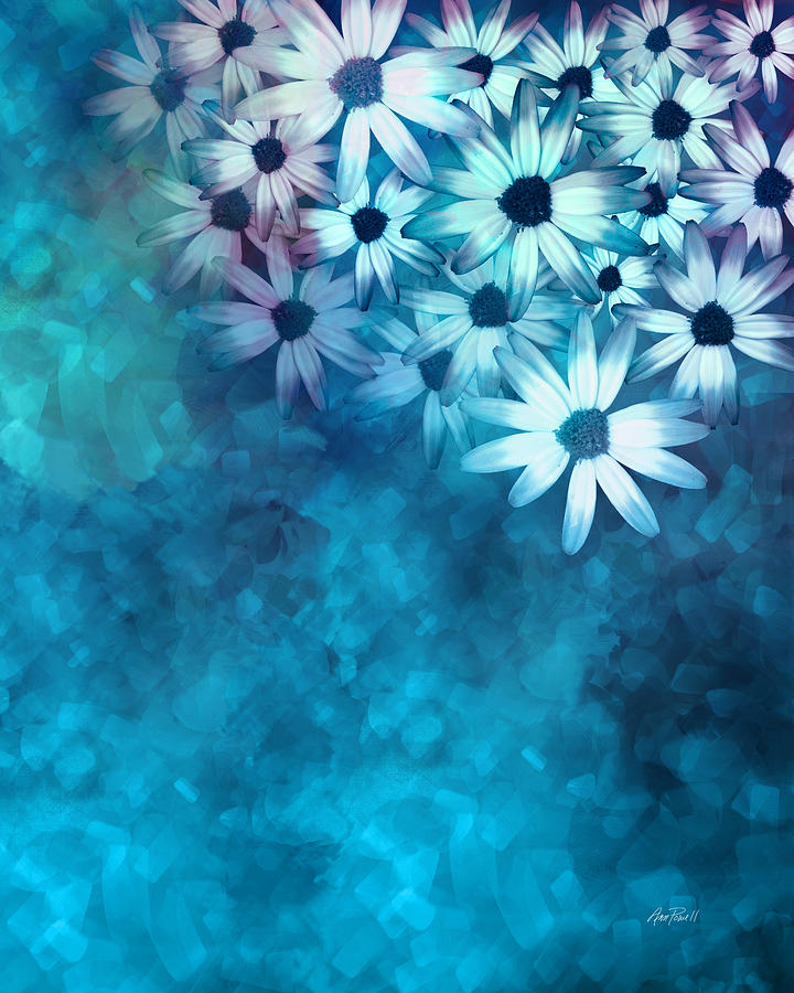 nature - flowers- White Daisies on Blue  Mixed Media