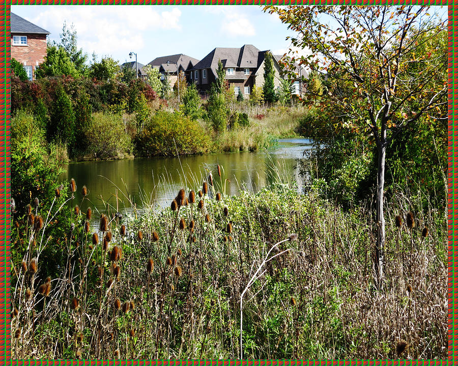 Wild Backyards :  Lake Houses Wild Backyard Season Reflecti Mixed Media by Navin Joshi