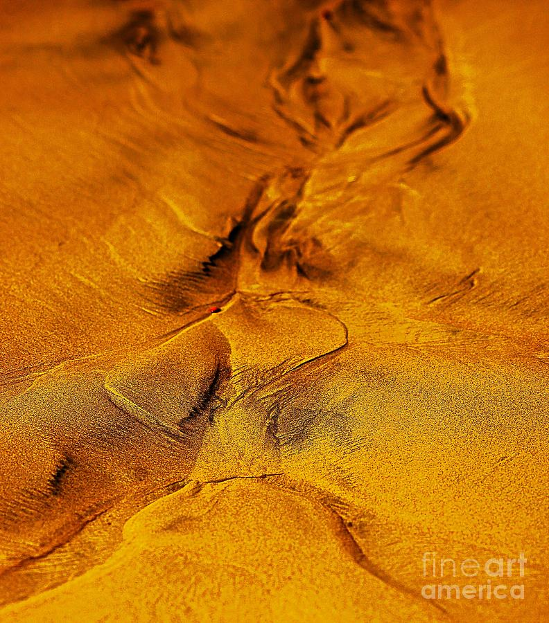 Natures Abstract Digital Art  - Natures Abstract Fine Art Print