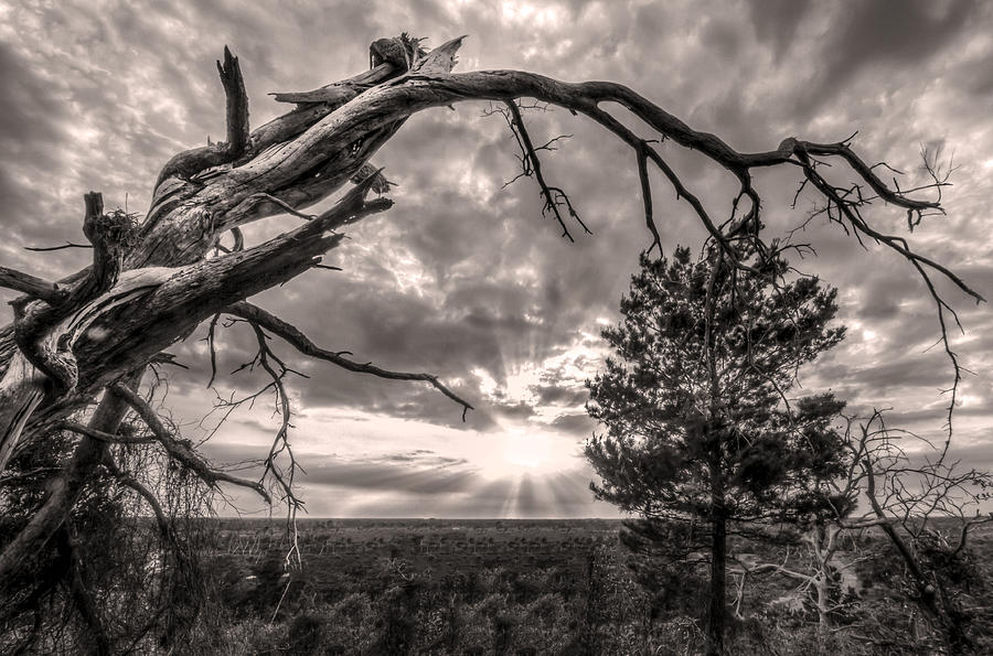 Natures Arch Photograph