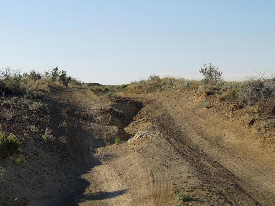 Navajo Two Track Photograph