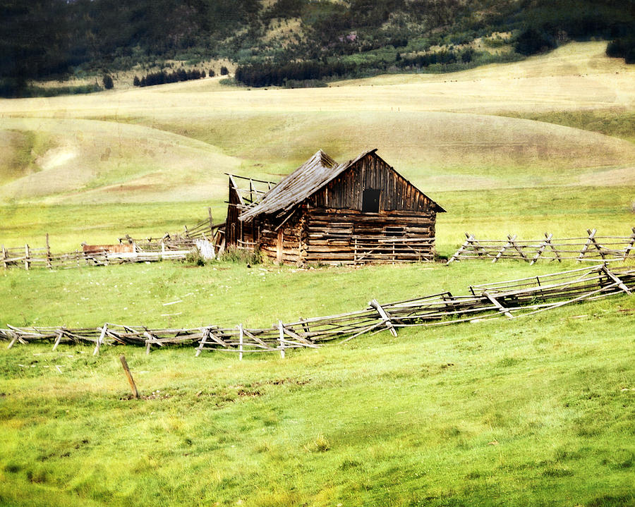 Near Helena Photograph