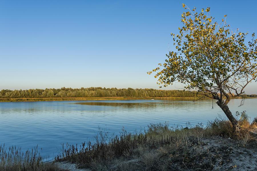Near River Photograph