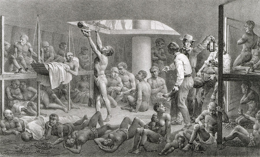 Negroes In The Bilge, Engraved Drawing