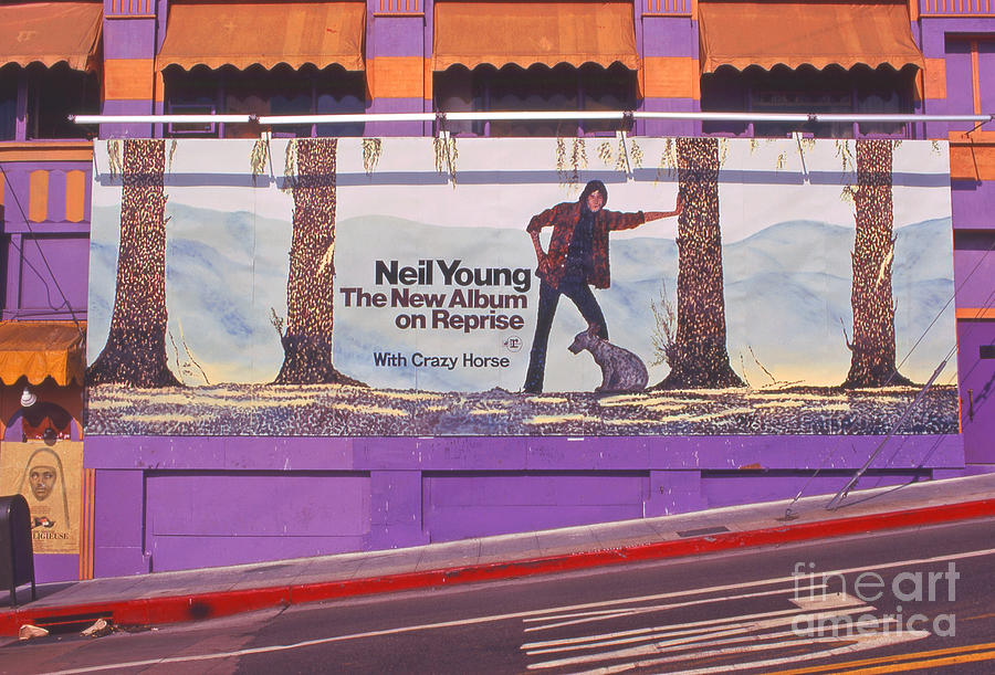 Neil Young Billboard Photograph  - Neil Young Billboard Fine Art Print