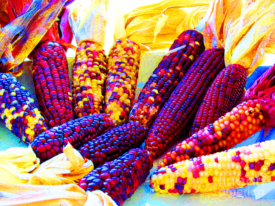 Corn Photograph - Neon Indian Corn by Tina M Wenger