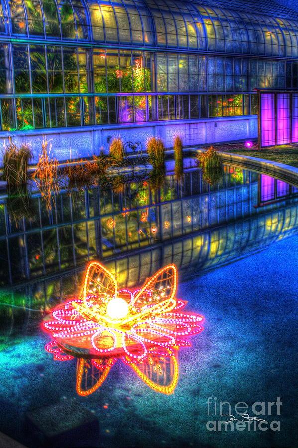 Neon Lilypad Photograph