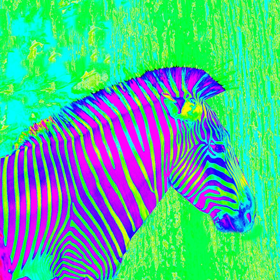 Neon Zebra 2 Painting by Jane Schnetlage