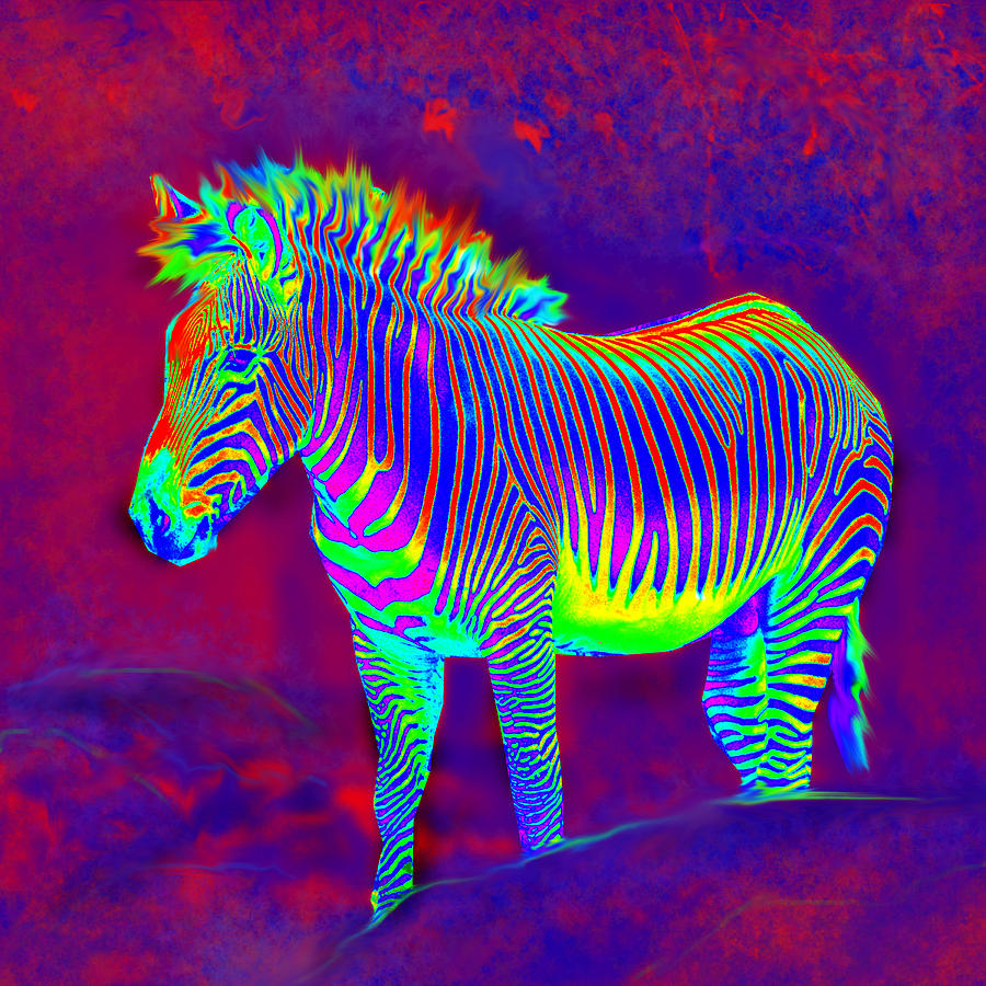 Neon Art - Neon Zebra by Jane  Neon