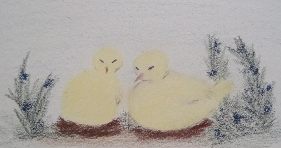 Nestling Chicks Drawing  - Nestling Chicks Fine Art Print