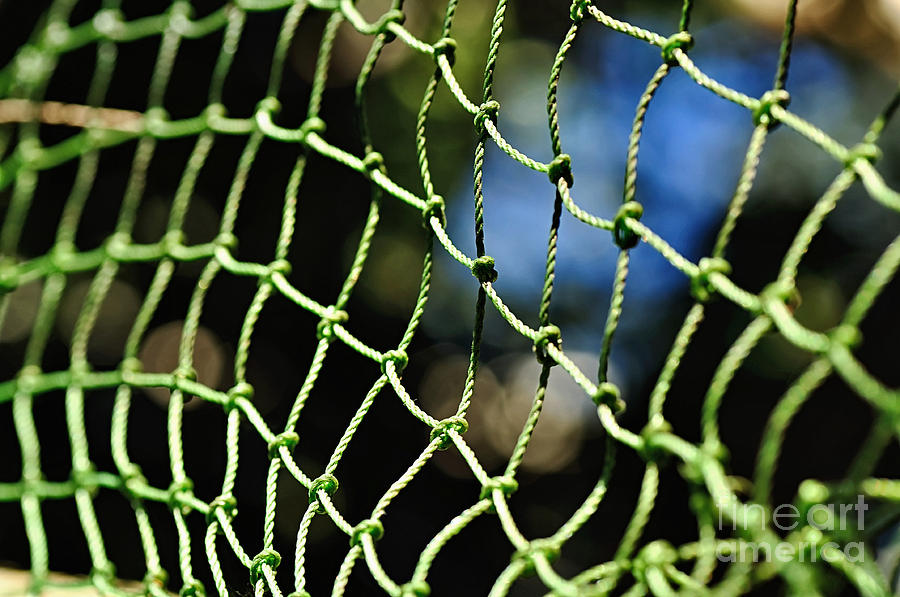 Photography Photograph - Netting - Abstract by Kaye Menner