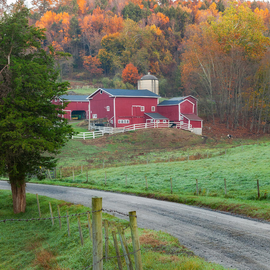 Farm Photograph - New England Farm Square by Bill Wakeley