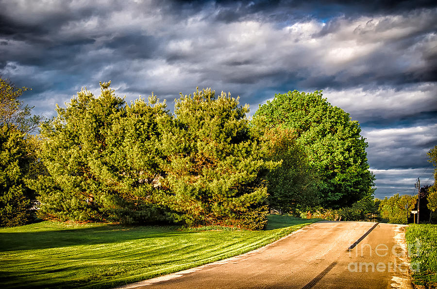 New England Spring 52 Photograph