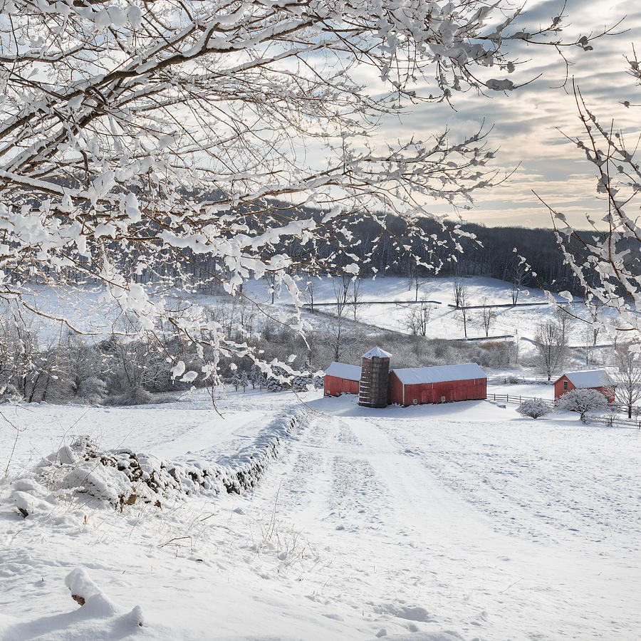 New England Winter Farms Square Photograph