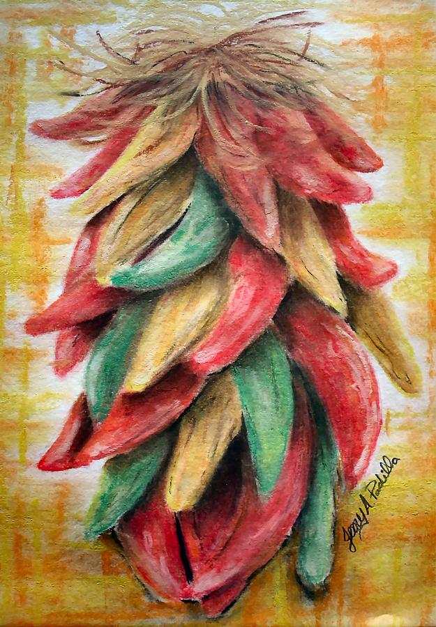 New Mexico Chili Drawing  - New Mexico Chili Fine Art Print