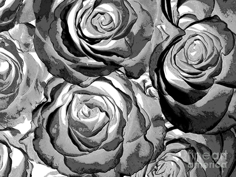 Pop art black and white roses photograph by toula mavridou for Large photographic prints for sale