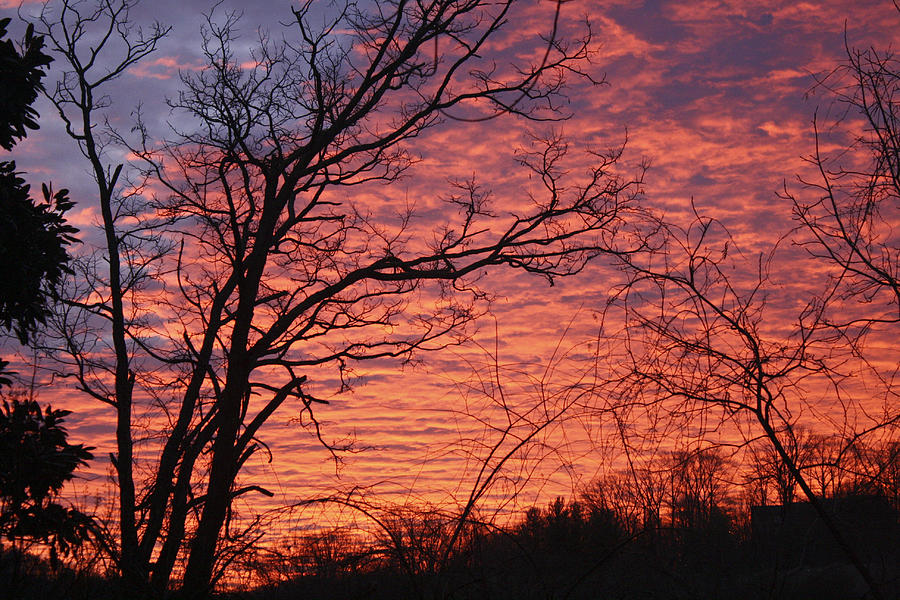 Sunrise Photograph - New Year Eve Sunrise by Teresa Mucha