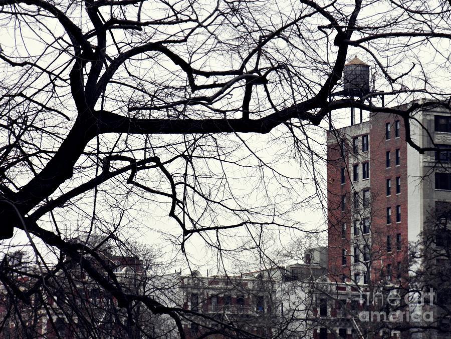 New York Winter Day Photograph - New York Winter Day 2 by Sarah Loft