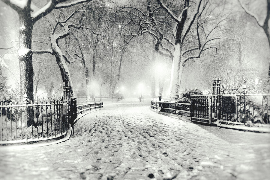 New York Winter Landscape - Madison Square Park Snow Photograph