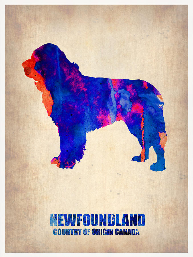 Newfoundland Poster Painting