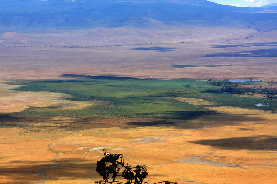 Ngorongoro Crater Tanzania Photograph